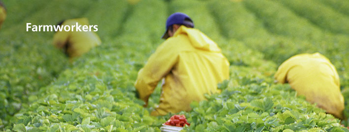 Farmworker Legal Assistance